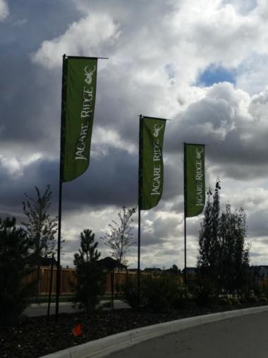 rototop flags edmonton